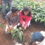 Practical of types of budding and grafting at krushi vibhag,Dindori